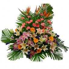 Congratulations flowers arrangement
