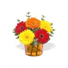 5 Small Gerberas Vase Bouquet